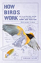 How Birds Work: An Illustrated Guide to the Wonders of Form and Function―from Bones to Beak