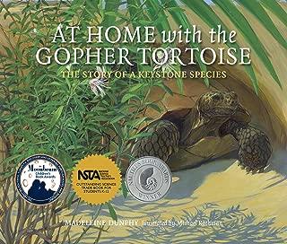 Best homes for tortoises Reviews