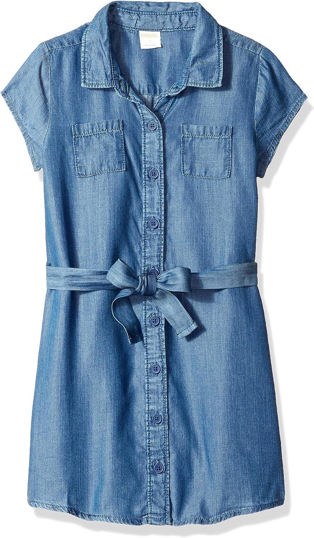 Gymboree Girls' Big Short Sleeve Casual Belted Woven Dress,