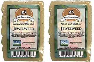 Essential Oil Goat Milk Natural CAMPING/Poison Ivy Bar Soap - Formulated specifically for activities related to camping and hiking (Pack of 2) (Jewelweed)