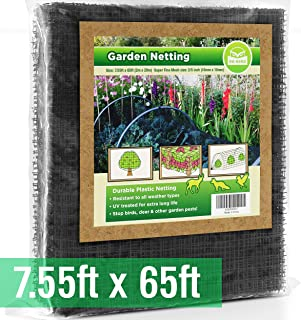 Agfabric Insect Netting