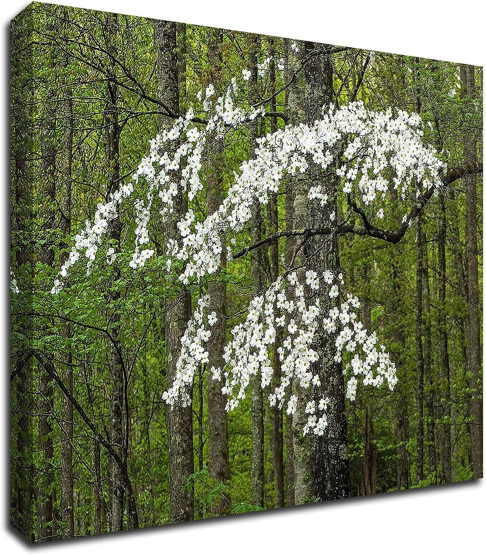 Tangletown Fine Art Dogwood Large special price Tree Colorado Springs Mall by Print Canva on Hammond David