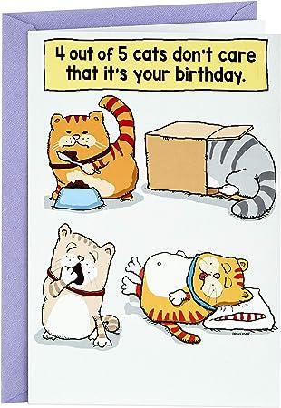 Hallmark Shoebox Funny Birthday Card