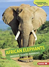 African Elephants: Massive Tusked Mammals