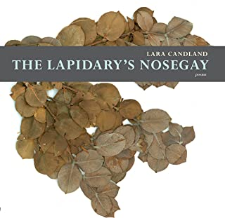 The Lapidary's Nosegay (Mountain West Poetry Series)