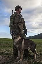 MARINE CORPS MILITARY WORKING DOG (MWD) MANUAL