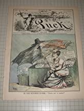 1880 Puck Magazine: Solid South Political Umbrella - Political