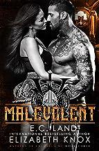 Malevolent (Raiders of Valhalla MC Book 3)