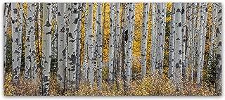 Aspen Trees by Pierre Leclerc, 10x24-Inch Canvas Wall Art