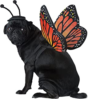 Black/Orange_Monarch Butterfly Dog Costume