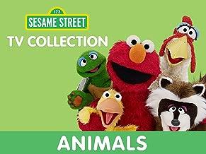 Sesame Street - Animals Collection
