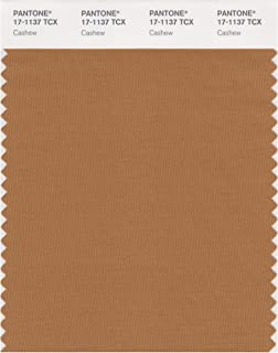 PANTONE Smart 17-1137X Color Swatch Card, Cashew