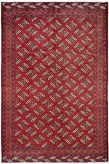 Shahbanu Rugs Red New Turkoman Bokara Pure Wool Hand Knotted Tribal Rug(6'10