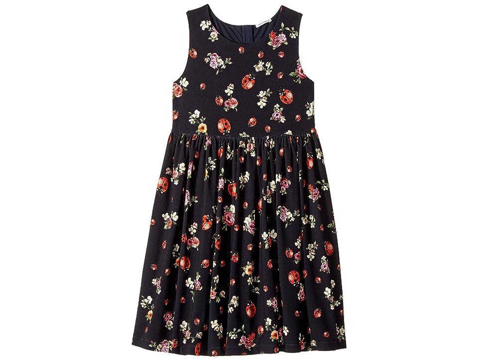 Dolce & Gabbana Kids Back To School Floral Dress (Big Kids) (Coccinelle) Girl