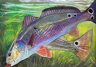 pastel fish art