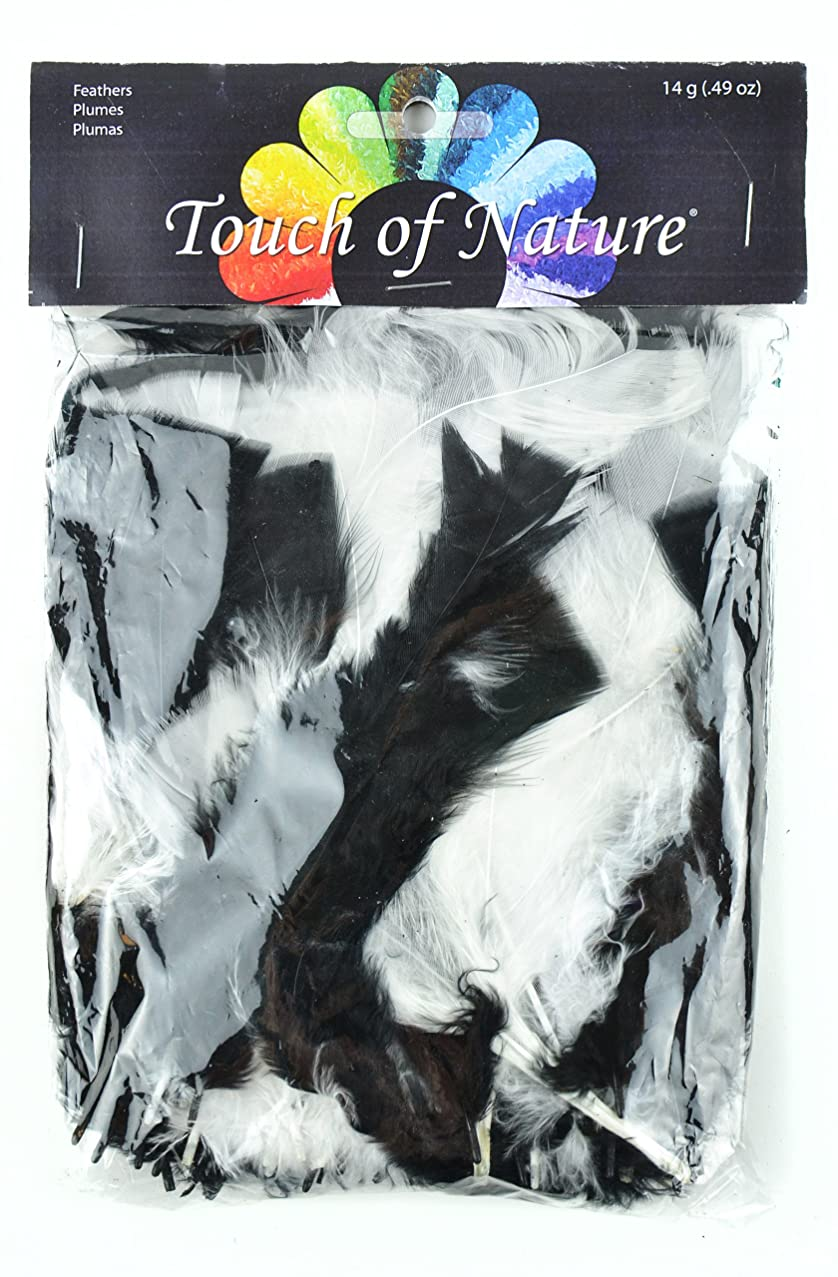 Touch of Nature 4 to 6-Inch Turkey Flat Feathers for Arts and Crafts, 14gm, Black/White