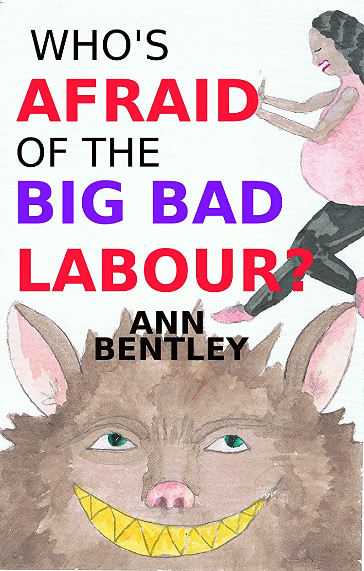 非難帳面外観Who's Afraid of the Big Bad Labour? (English Edition)