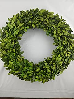 Tradingsmith Preserved Boxwood Wreath 14 in