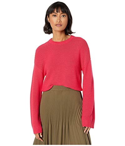 BCBGeneration Pullover Sweater DNO5236509 (Hot Pink) Women