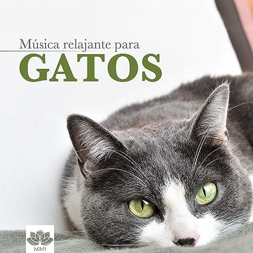 Música para Gatos: Música Relajante Instrumental para Calmar a Gatos Nerviosos