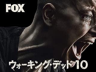 ウォーキング・デッド シーズン10(字幕版)