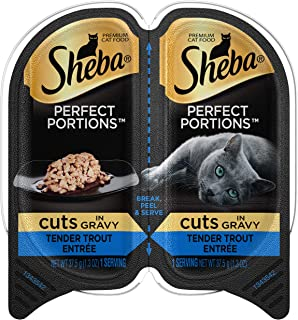 Best cat feeder timer wet food Reviews