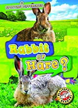 Rabbit or Hare? (Spotting Differences: Blastoff! Readers, Level 1) (Blastoff! Readers, Level 1: Spotting Differences)