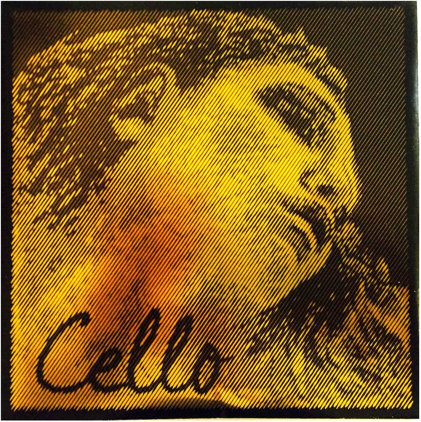 Pirastro Evah Pirazzi Gold 4 Cello - Gauge C Medium Limited price gift String