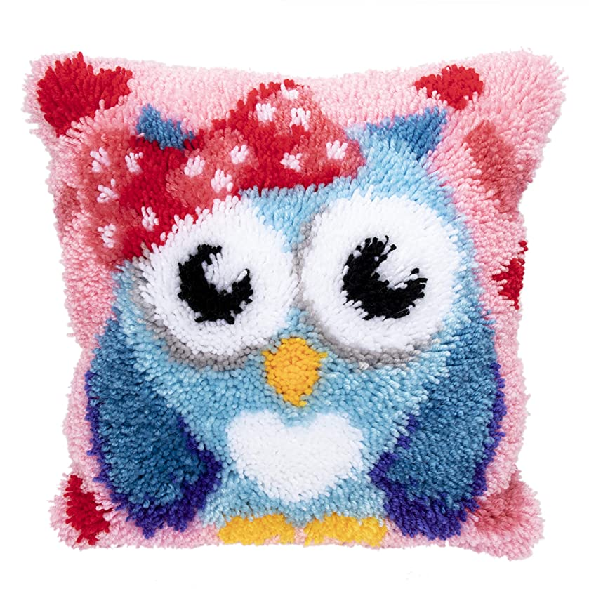 Beyond Your Thoughts DIY Latch Hook Kits Throw Pillow Cover Cute OWL Rug Pattern Printed 16X16 inch, Crochet Needlework Crafts for Kids and Adults
