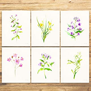 Botanical Prints Wall Art: Floral Prints - (Set of 6) - Unframed - 8x10 Flower Green Plant Watercolor Painting Print Poster Wall Art - Pictures for Kitchen, Home, and Office Decor