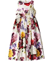 Dolce & Gabbana Kids - Floral Dress (Big Kids)