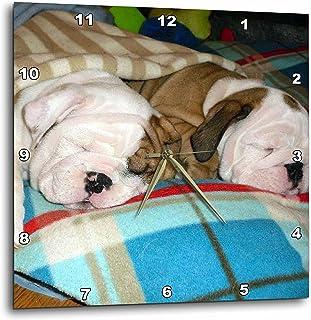3dRose DPP_51655_1 English Bulldog Powernap Wall Clock, 10 by 10-Inch