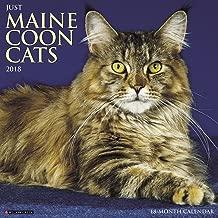 Best maine coon calendar 2018 Reviews