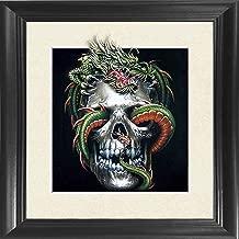 Skull Dragon Framed 18.5x18.5