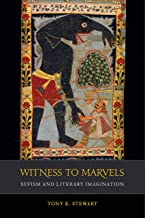 Witness to Marvels: Sufism and Literary Imagination (Islamic Humanities Book 2) (English Edition)
