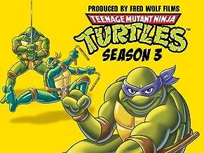 ninja turtles blast from the past