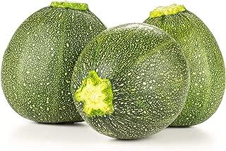 Summer Squash, Zucchini Eight Ball Hybrid Seeds - Non-GMO - 10 Seeds