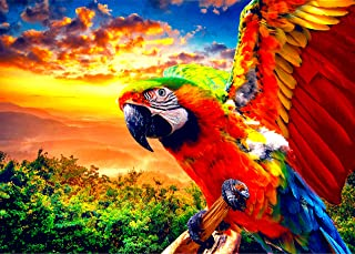 1000 Piece Jigsaw Puzzle - Wild Parrot Puzzle - Best Color Challenging Jigsaw Puzzle Games – Difficult 1000 Piece Table Jigsaw Puzzle Game
