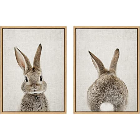 Amazon Com Kate And Laurel Sylvie Female Baby Bunny Rabbit Animal Print Portrait Framed Canvas Wall Art By Amy Peterson 18x24 Gray Posters Prints