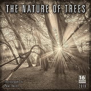 tree calendar 2019