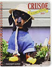 Crusoe the Celebrity Dachshund 2019 Engagement Calendar (Dog Breed Calendar)