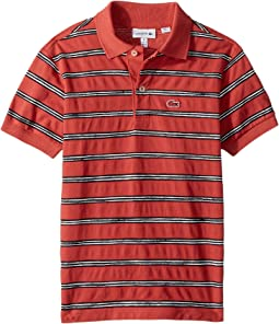 Lacoste Kids - Striped Cotton Mini Pique Polo (Infant/Toddler/Little Kids/Big Kids)