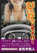 びんびんドライバー (日本ジャーナル出版)