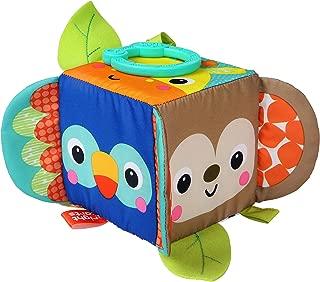 Bright Starts Hide & Peek Block Activity Toy