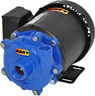 AMT Pump 369C-95 Straight Centrifugal Pump, Cast Iron, 1 HP, 1 Phase, 115/230V, Curve F, 1-1/4