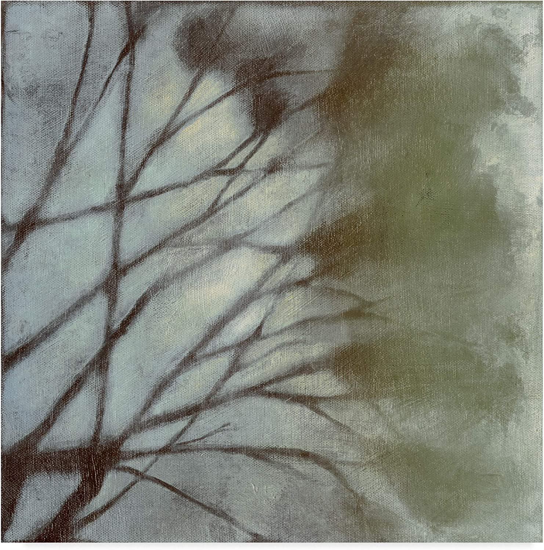 Trademark Fine Art Diffuse Branches Ii by Jennifer goldberger, 14x14-Inch