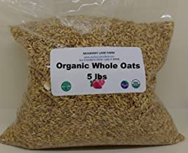 Whole Oats 5 Pounds Hulled, Groats, USDA Certified Organic Non-GMO Bulk