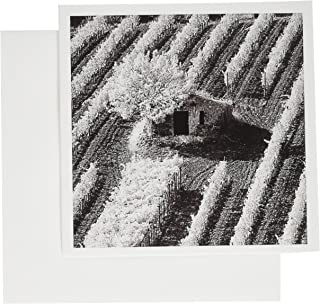 3dRose Stone barn and vineyard, Montalcino, Italy, Tuscany - EU16 AJE0162 - Adam Jones - Greeting Cards, 6 x 6 inches, set of 12 (gc_82040_2)