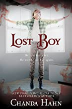 Lost Boy (Neverwood Chronicles Book 2)