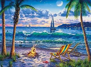 Buffalo Games - Darrell Bush - Coastal Twilight - 1000 Piece Jigsaw Puzzle